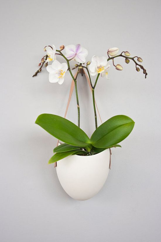 Porcelain and Leather Planter Set of 3
