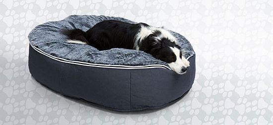 Ambient Pet Lounge Luxury Pet Lounges
