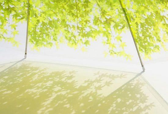 Komorebi Umbrella