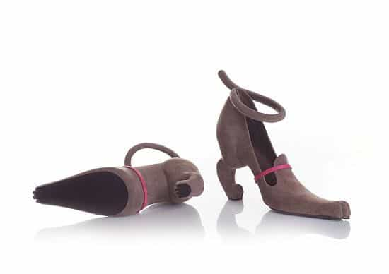 Cat Shoes by Kobi Levi