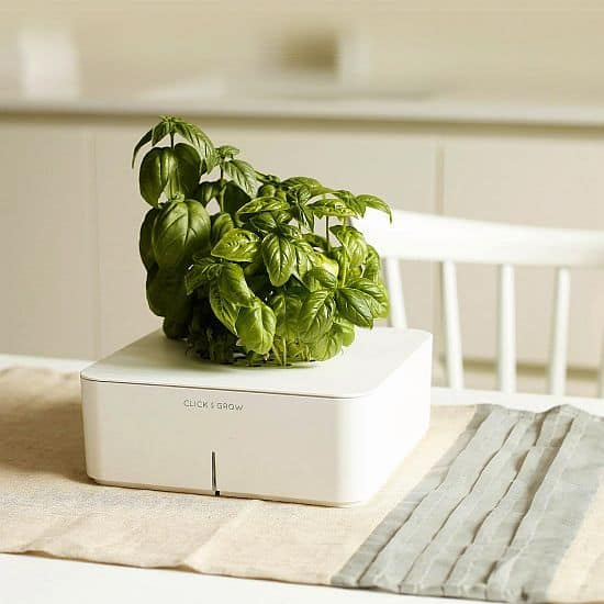 Click and Grow Self Watering Basil Planter Starter Kit