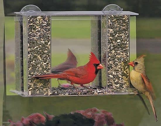 One-Way-Mirror Birdfeeder