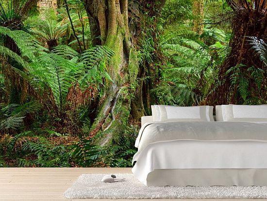 Rainforest Wall Mural