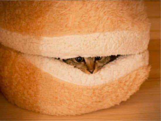 Cat Burger Bed