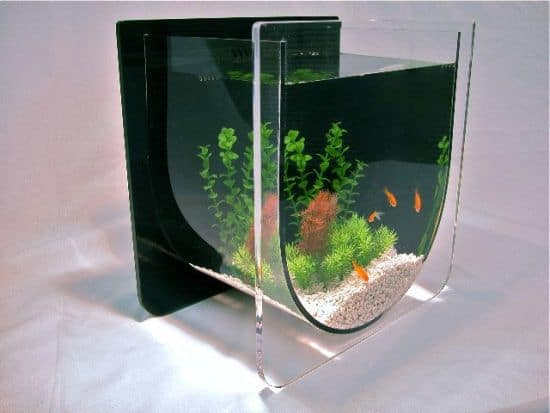 ZeroEdge Aqua U Aquarium