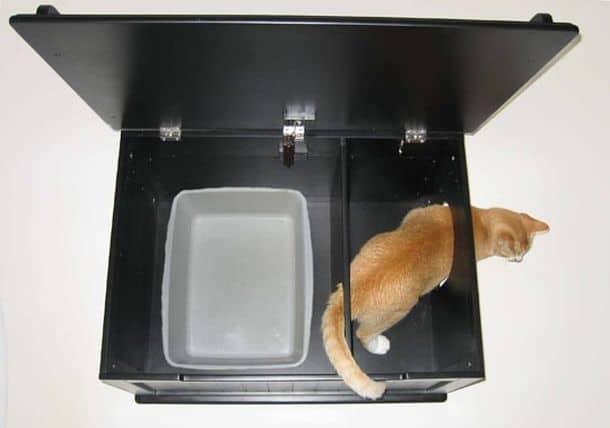 Как сделать так чтобы кошачий лоток не вонял